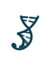 Gene Synthesis and DNA Synthesis Services