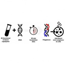 Helix-IN™ DNA Transfection Reagent