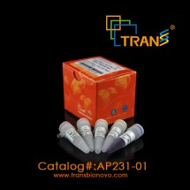 TransStart® FastPfu Fly DNA Polymerase