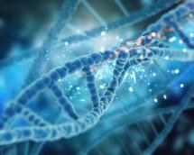 NGS - Epigenomics